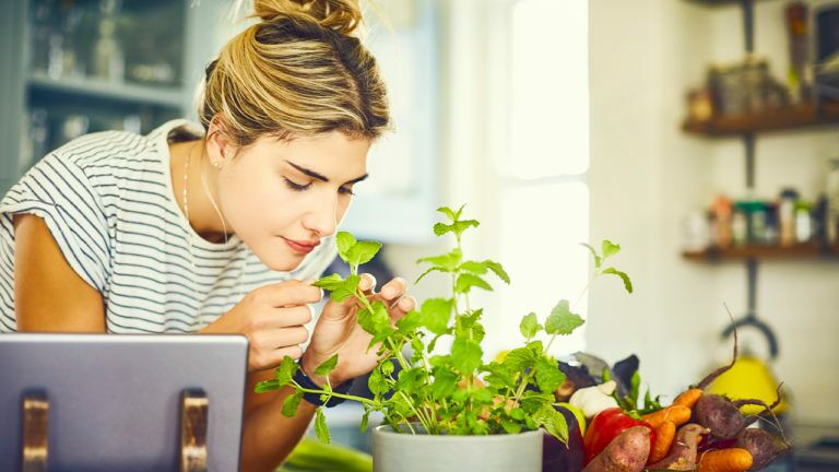 Here are some tips for growing herbs.