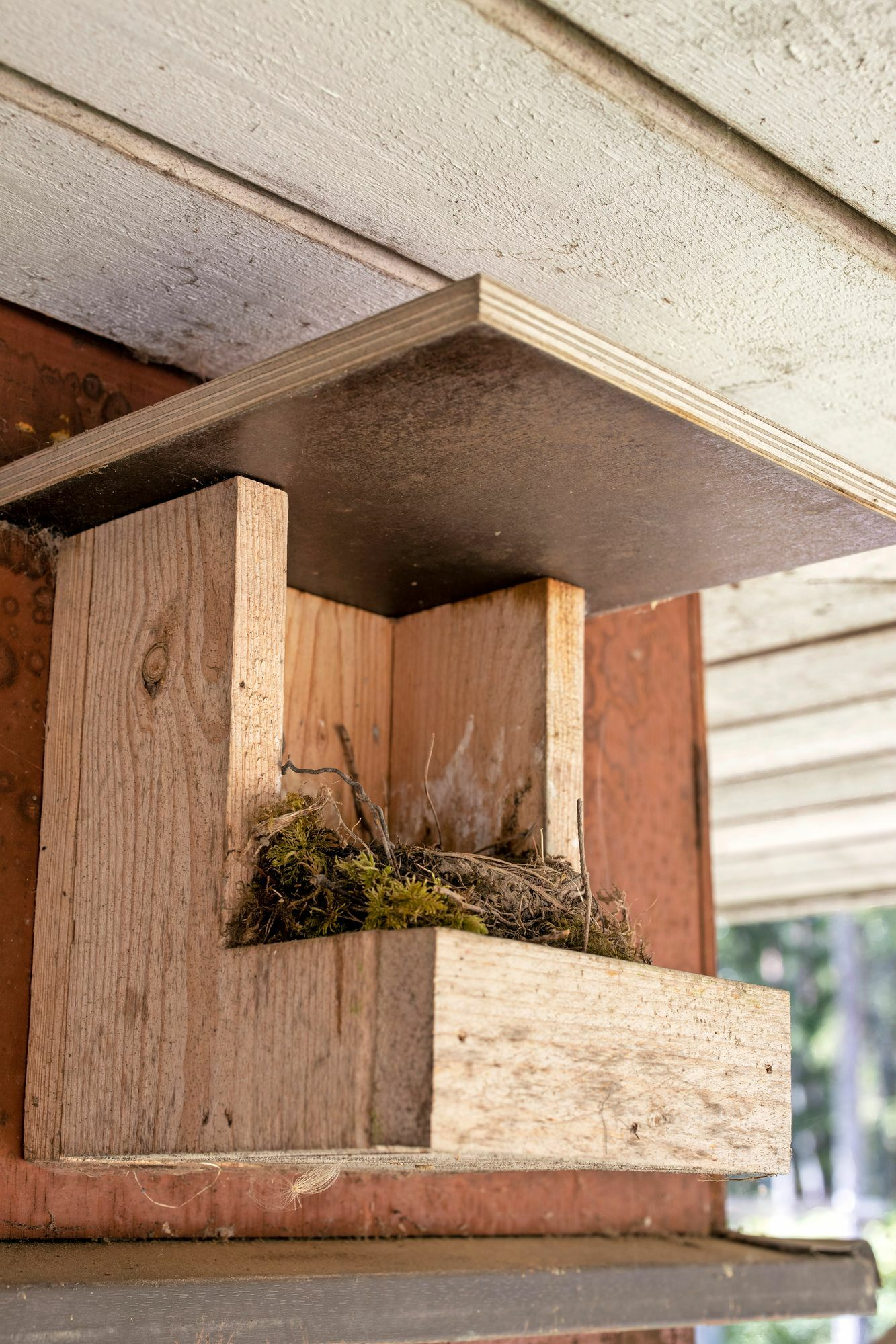 The maintenance of the birdhouse includes the removal of old nest fillings.  The open bowl is hung on the wall of the building under the eaves.  It is suitable for dreadlocks.