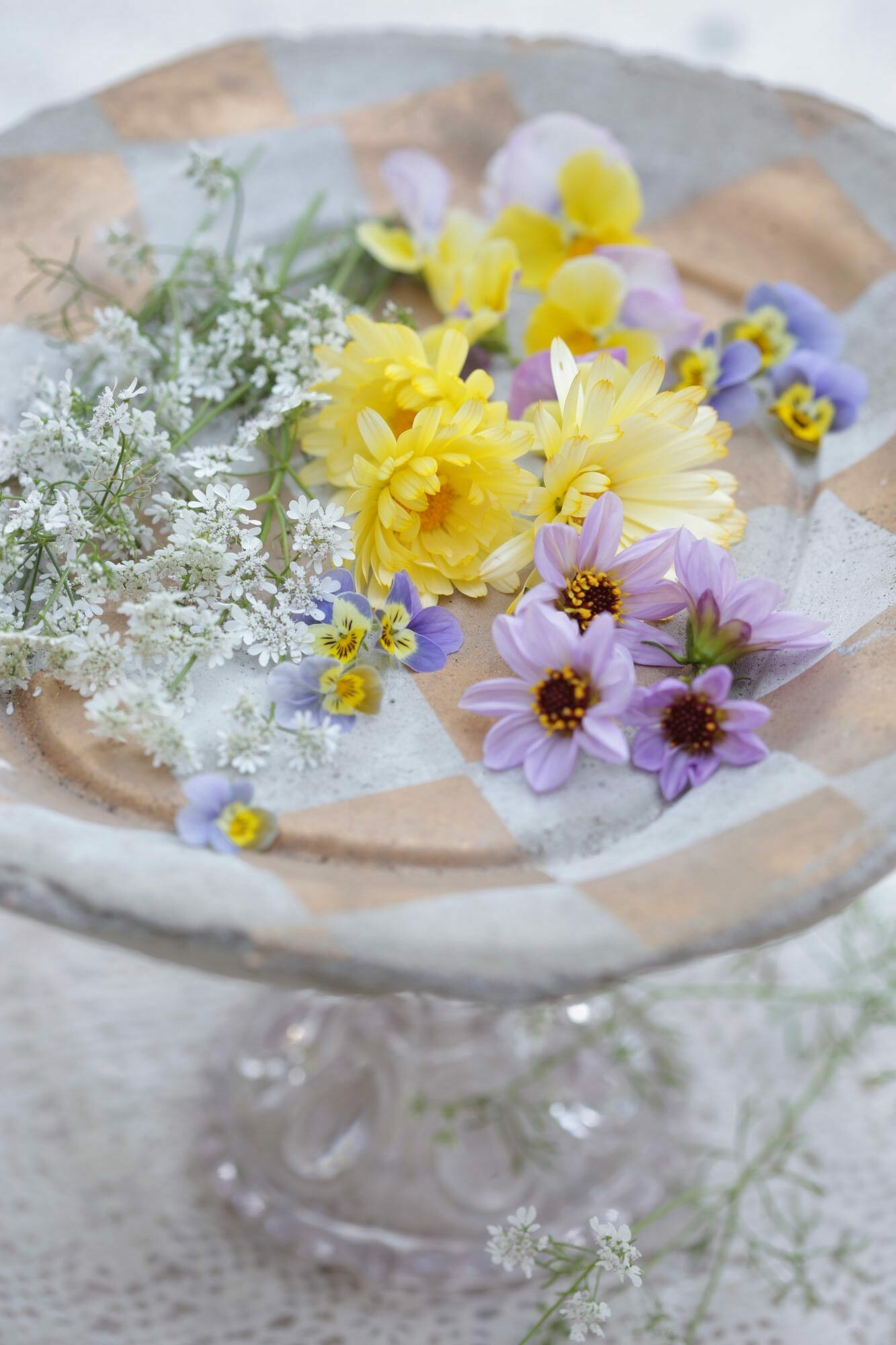 Edible flowers: the mild-tasting flowers of dahlia, calendula and violet are suitable for both savory and sweet foods.  Taste the flowers as is.