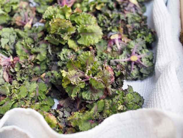 Kalette eli flower sprouts