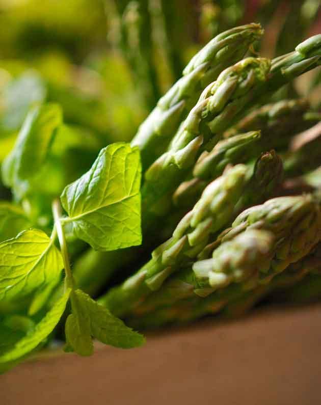 Vihreää parsaa ja minttua