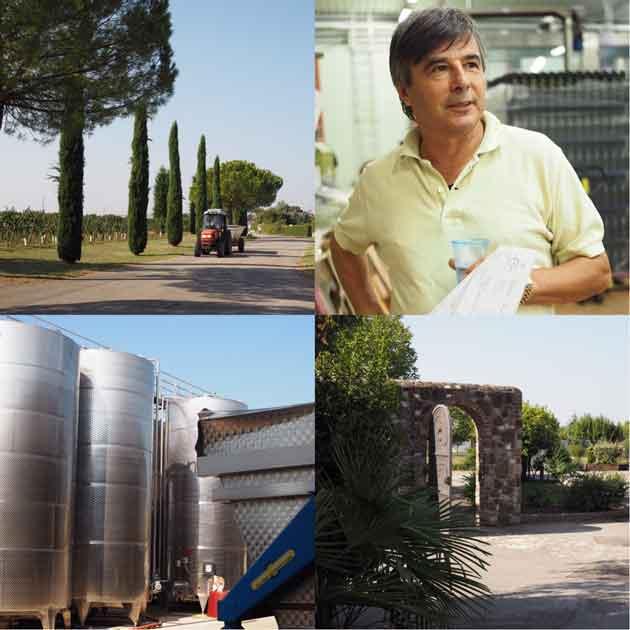 livon_winemaker