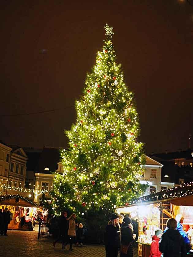 Tallinnan joulukuusi 2016