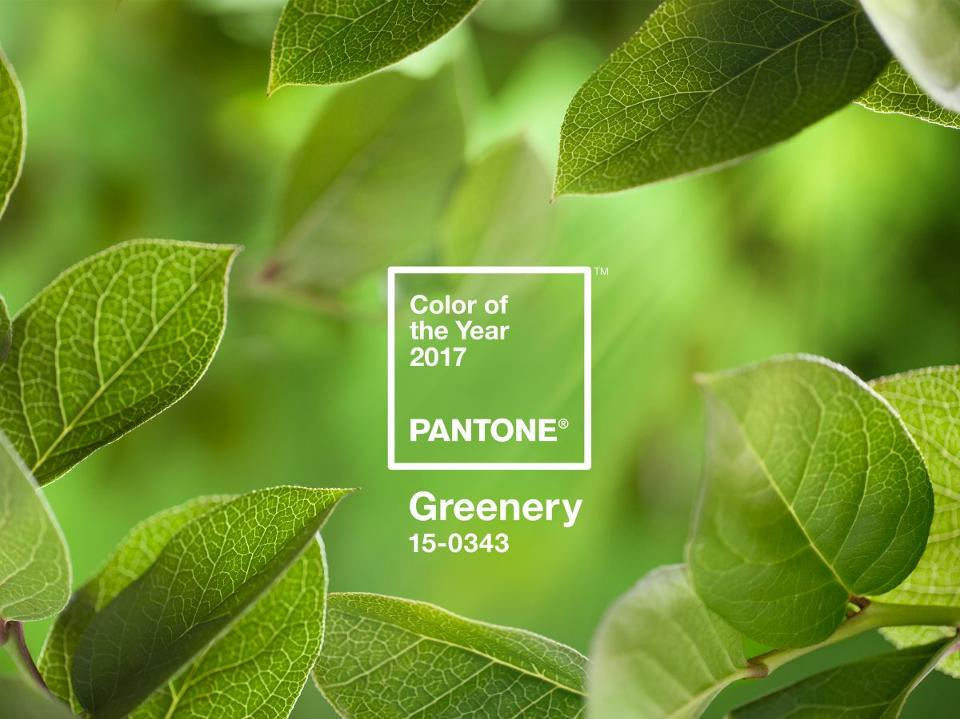 vuoden pantone väri greenery