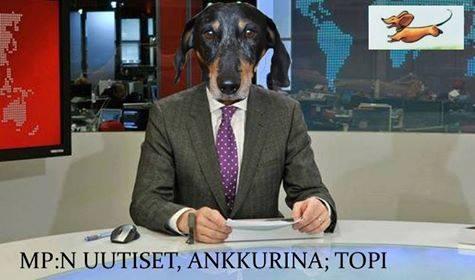 Koirakopla_kotiliesi_Hulda_Topie