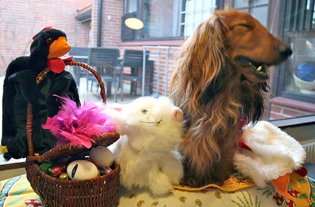 Koirakoplan Hulda, korillinen suklaamunia, musta kana ja valkea pupu.