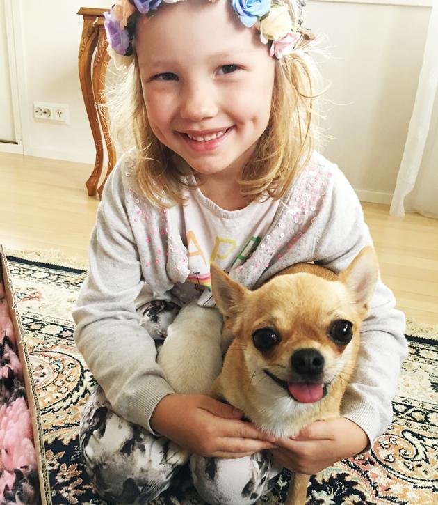 Chihuahua Liisa ja pieni ainokainen pentu.