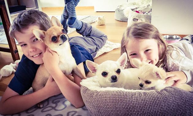 Mikä ihana kotiinpaluu! Laura pujahti osaksi perhettä niin kuin olisi aina meillä ollut.
