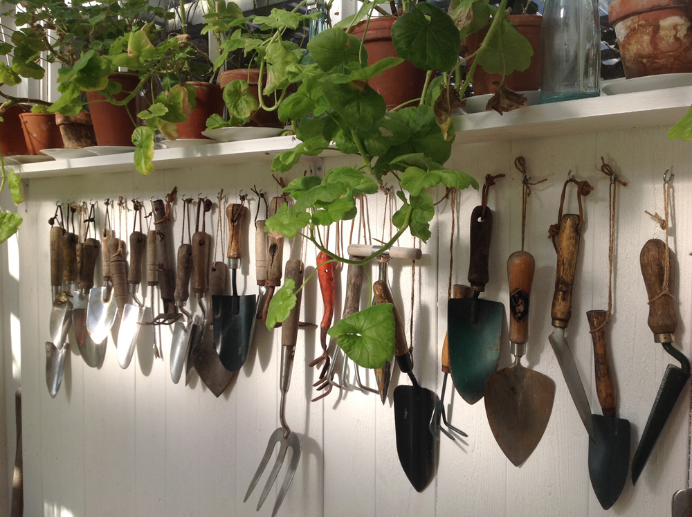 pelargonit ja työkalut
