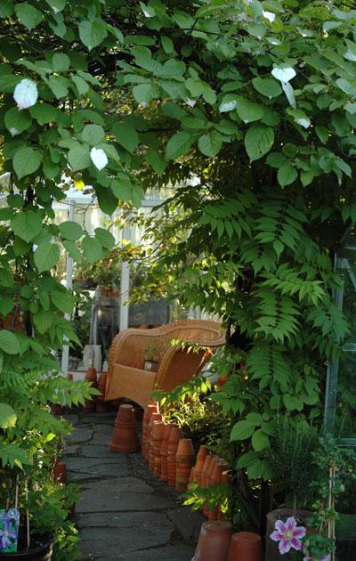 Portti puutarhassa
