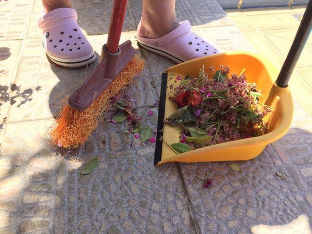 siivousta ruukkupuutarhassa kreetalla