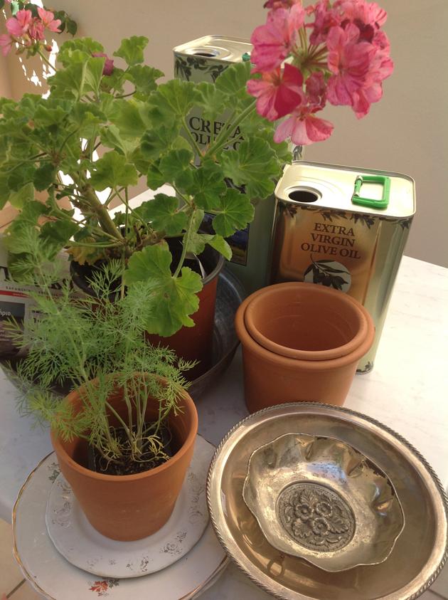 puutarhaan tuliaisia kreetalta