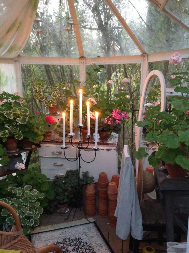pelargonihuoneessa kynttilät