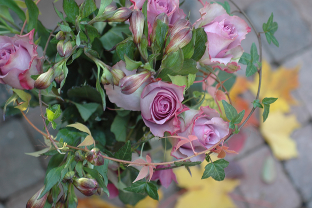 ruusuja terassilla