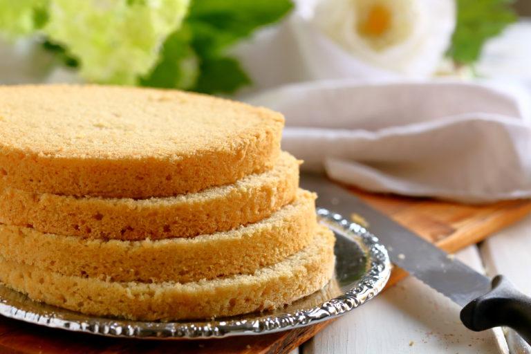Munaton kakkupohja