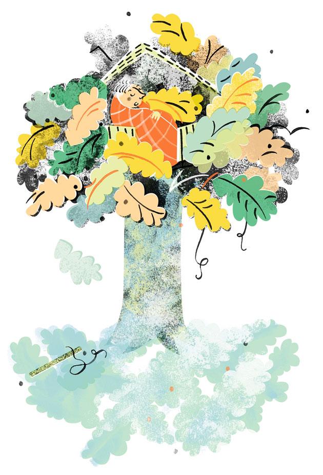 Piiretty kuva tammesta, jossa värikkäät lehdet