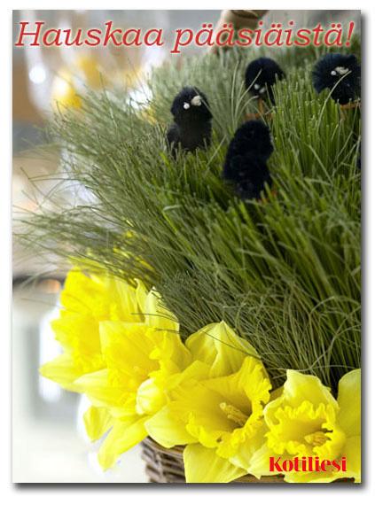 Lähetä Hauskaa pääsiäistä -tervehdys e-korttina