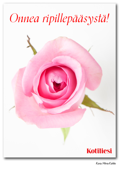 Lähetä Onnea ripillepääsystä -onnittelukortti e-korttina. Kuvassa pinkki ruusu