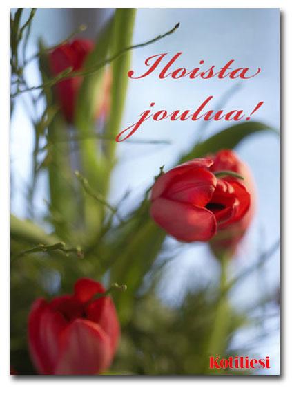 Lähetä Iloista joulua -tervehdys Kotilieden e-kortilla!