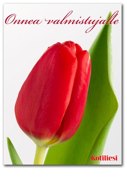 Onnea valmistujalle -onnittelukortti punaisella tulppaanilla, e-kortti