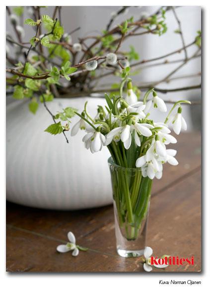 Lähetä kukka-aiheinen sähköinen e-kortti pääsiäiseksi!