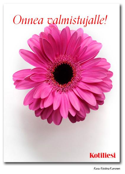 Onnea valmistujalle -onnittelukortti pinkillä kukalla e-korttina