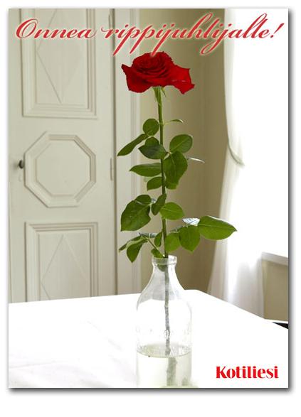 Punainen ruusu: Lähetä Onnea rippijuhlijalle -toivotus e-kortilla!