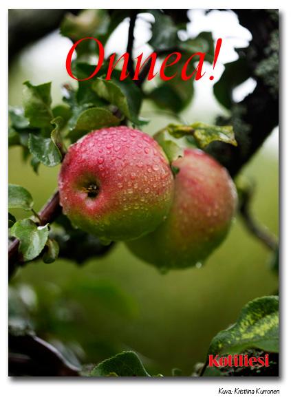 Lähetä onnittelut omenaisella Kotilieden e-kortilla!