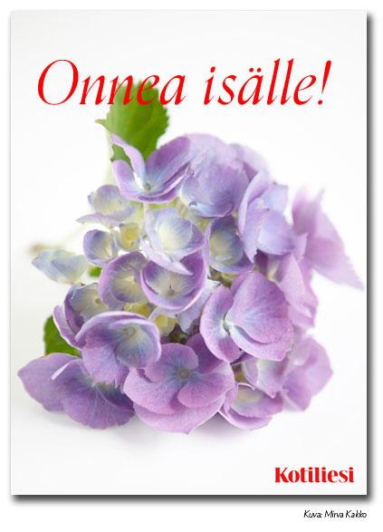 Onnea isälle -onnittelukortti Kotilieden e-korttina. Kuvassa liiloja kukkia