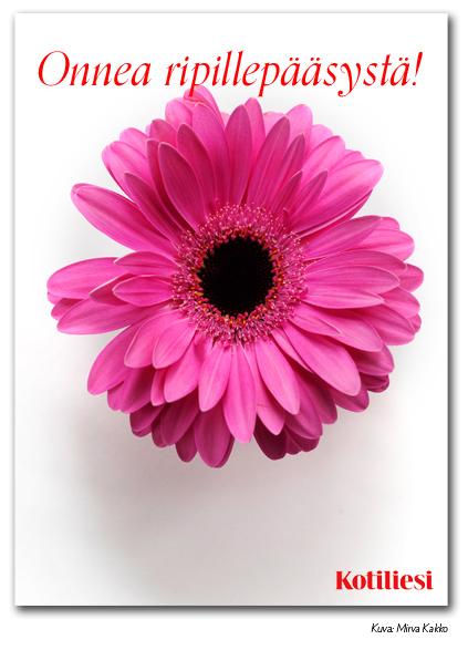 Pinkki kukka: Lähetä Onnea ripillepääsystä -onnittelukortti sähköisenä e-korttina