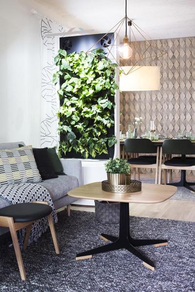 Viherkasvit voi koota seinälle viherseinäksi.