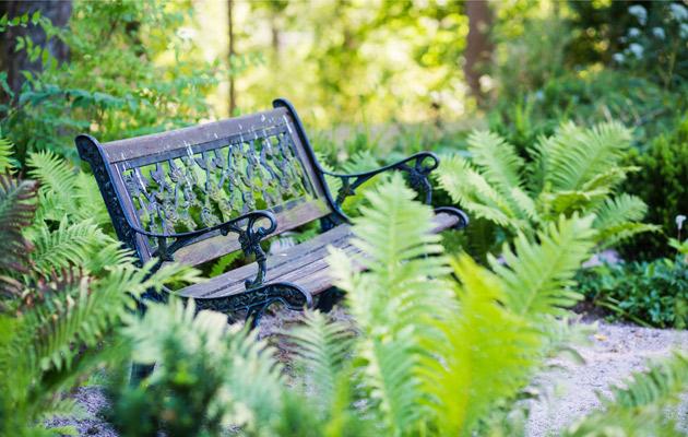 mielenrauhaa puutarhasta