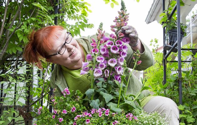 Kotiliesi puutarhabloggari Paula Ritanen-Närhi