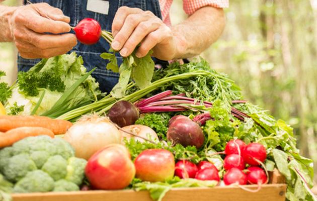 Bokashi-kompostointi tuottaa ravinteikasta multaa ja kasvit kiittävät.