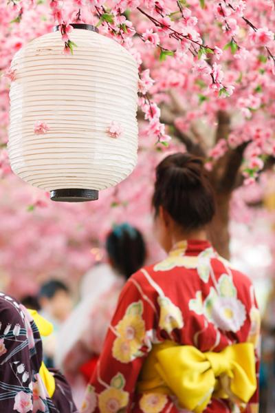 Tokion kirsikkapuut