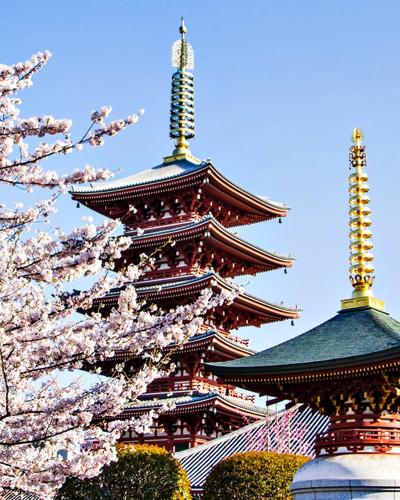 vanhan Tokion temppeli