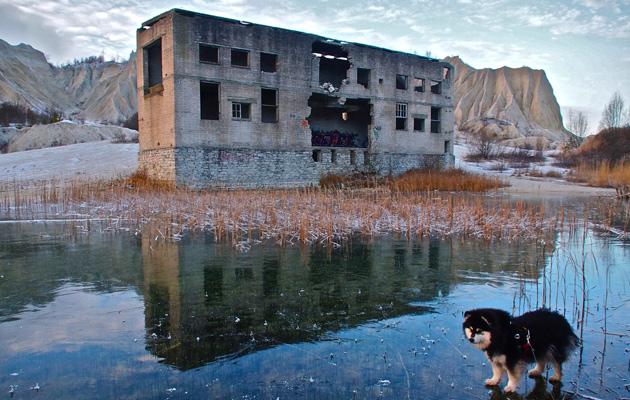 Rummun entinen vankila Virossa on veden saartama. Hilla-koira etualalla