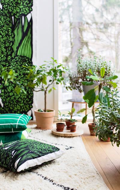 Sisusta koti viherkasveilla ja tekstiileillä