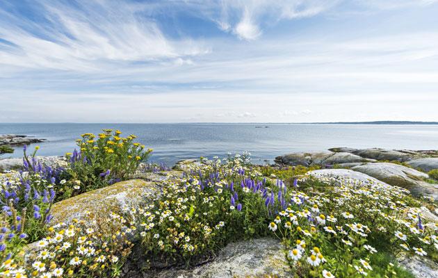 Kustavi Saaristomerellä