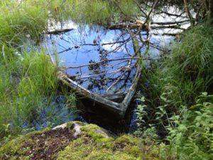 Teijon kansallispuisto, Nina Hautala