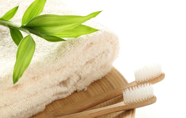 bambu-hammasharja