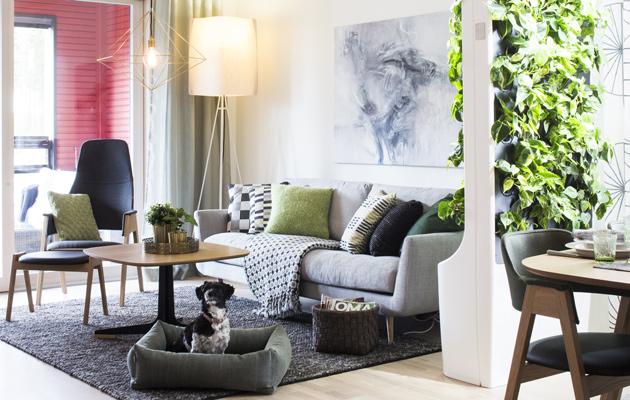 sohvan ostajan opas