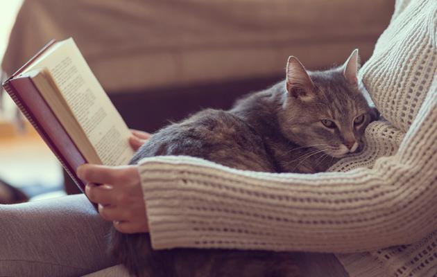 nainen lukee kirjaa kissa sylissä