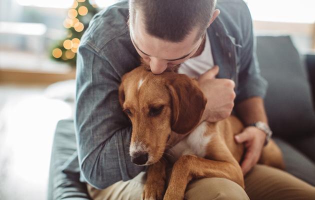 Koiran omistaminen kannattaa monin tavoin.