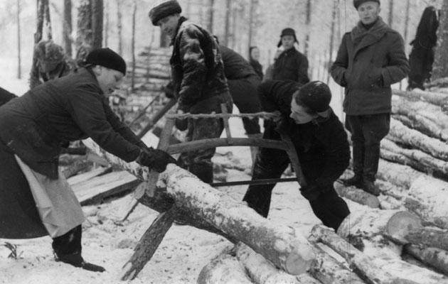 Mottitalkoot sota-aikana