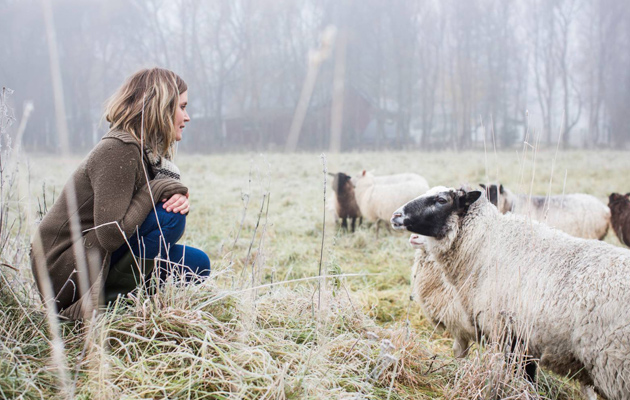 Sanna ja lampaat pellolla