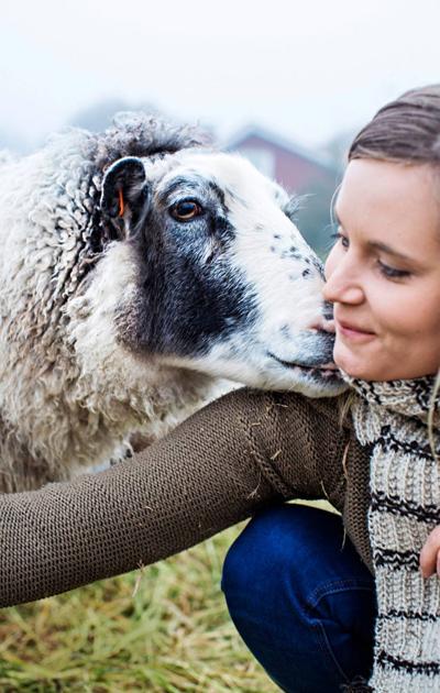 Sanna ja lammas