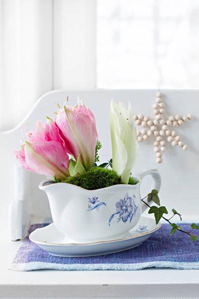 Kukkia kastikekannussa
