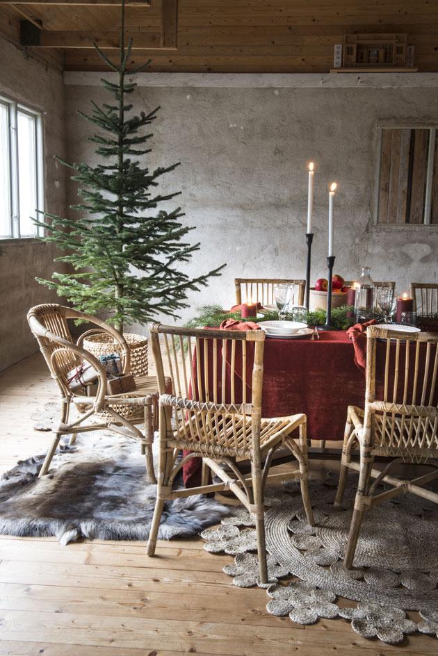 joulukuusi ilman koristeita