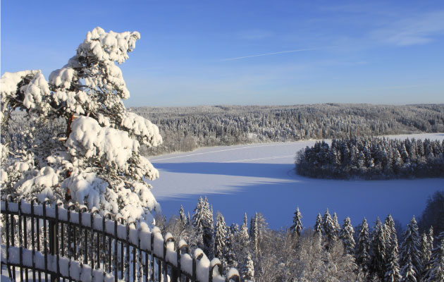 Aulanko talvella
